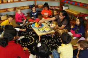 Montessori Schools in Chicago